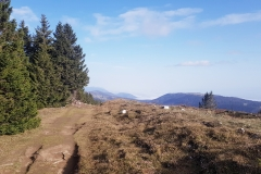 2020-Chasseral